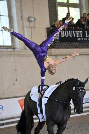 Team Gbr British Equestrian Vaulting